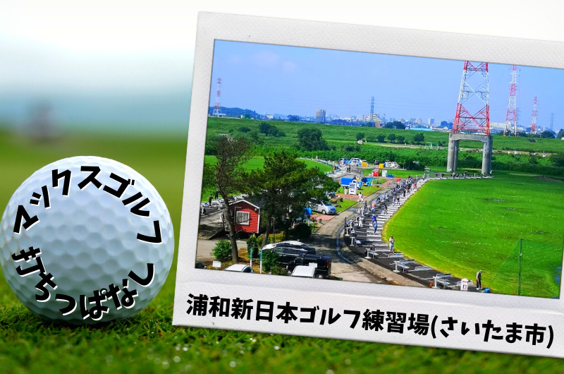 浦和新日本ゴルフ練習場(さいたま市)|さいたま市内ゴルフ「打ちっぱなし練習場」